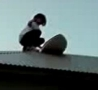 Funny Links - Roof Surfing Mega FAIL!
