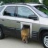 Funny Links - Doggie Door Car