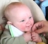 Funny Links - Lemon Babies