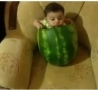 Funny Links - Baby Eating Watermelon or Watermelon Eating Baby?