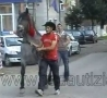 Funny Links - Never Walk Behind a Horse