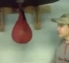 Funny Links - Fight To Speed Bag