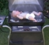 Funny Links - Grilling Baby