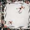 Cool Pictures - Boxing From Above
