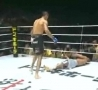 Cool Links - Vicious Head Kick Knockout