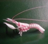 Cool Pictures - Amazing Shrimp Creation