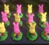 Easter Funny Pictures - Bunny Cupcakes