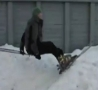 Funny Links - Roof Skiing Fail