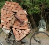 Funny Links - Carrying Bricks