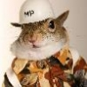 Funny Animals - Funny Squirrels