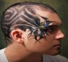 Illusions - Craziest Hairstyles