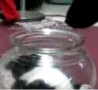 Funny Links - Cat In Vase vs Dog