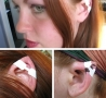 Weird Funny Pictures - Elf Ears