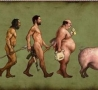 - Evolution Of Man