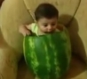 Funny Links - Baby Eating Melon
