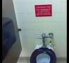 Funny Pictures - Flush for 30 Seconds