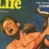 Funny Links - Mans Life Magazine