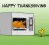 Funny Pictures - Happy Thanksgiving