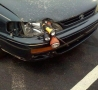 Funny Links - Headlight Fix