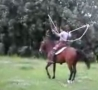 Cool Links - Horse Skipping