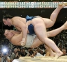 Funny Pictures - Sumo-Earthquake