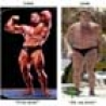 Political Pictures - Arnold Is Fat