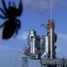 Cool Links - Giant Spider Space Shuttle