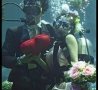 Cool Pictures - Underwarer Wedding