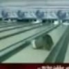 Funny Links - Fools Bowling Celebration